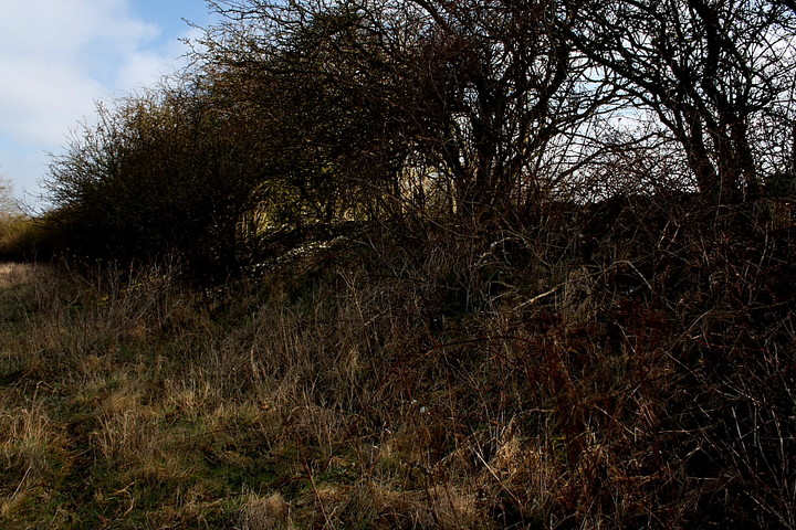 Maiden Bower (Hillfort) by GLADMAN