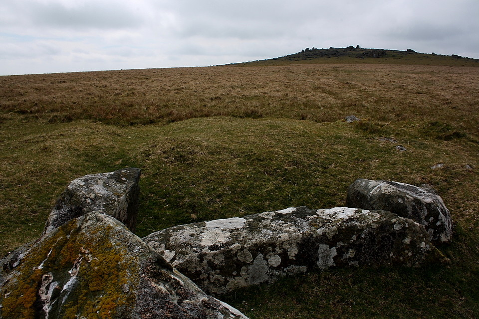 White Tor East (Cist) by GLADMAN