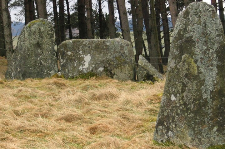 Tomnagorn (Stone Circle) by greywether