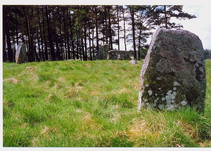 Tomnagorn (Stone Circle) by GLADMAN