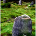<b>The Twelve Apostles of Ilkley Moor</b>Posted by Darksidespiral